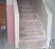 escalier menant au 1er 1 2 niveau