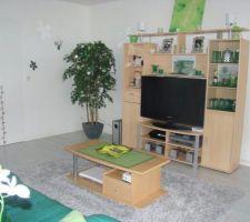 Photo déco de notre ancien appartement (78) ; que nous pensons reproduire en grande majorité dans notre futur maison.