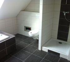 wc suspendu trape d acces
