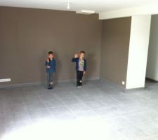 mur brun taupe