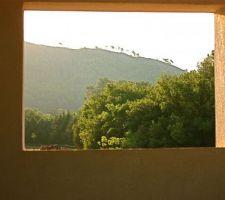 Vue splendide sur la colline d'en face... un lever de soleil agréable avec la vue des chevaux des voisins...