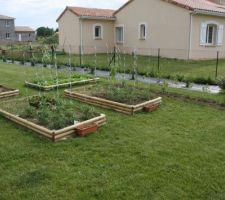 Les carrés de jardin  avec tomates, tomates cerises, poivrons, courgettes, fraises, radis,salades, framboisiers, cassis, aromates, aubergine, betteraves rouges, poireaux, poivrons, potirons.