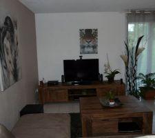 Nos nouveaux meubles commandés sur le site Massivum dans notre appartement en attendant d'avoir la maison : la table basse et le meuble télé en palissandre