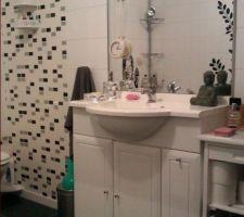 cote lavabo c la que je me trouve beau le mirroir aussi il me le dis