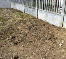 enlevement des mauvaises herbes