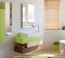MEuble salle de bain enfant mais au lieu du vert anis : turquoise, et au lieu du bois en bas, ce sera gris clair