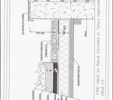 detail de la toiture vegetalisee
