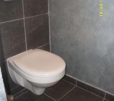 Déco du WC style industriel , couleur  des murs en gris  métal . C'est très beau , j aime beaucoup