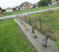 Haie libre composée pour 1/3 de persistants (laurier, fusain du japon, troène, photinia), 1/3 d'arbres (copalme d'amériaue, érable, pommier à fleur, cerisier à fleur, magnolia, sorbus, tuliper...) et 1/3 d'arbustes (érable japonais, hibiscus, kolkwitzia, corète, deutzia, aronia, berberis, lila des indes...) Vivement que ça pousse !