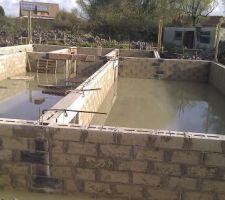 Notre nouvelle piscine naturelle....