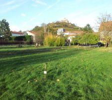 Terrain nu (arbres abbattus) - clôture retirée pour l'accès au chantier