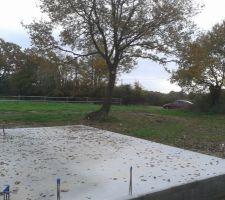 Élagage du chêne à coté de la futur terrasse (Sud-ouest)