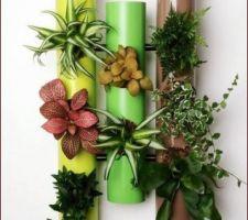 Idée de cadre végétal
