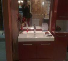 meuble de salle de bain coloris wengue et non rouge comme sur la photo