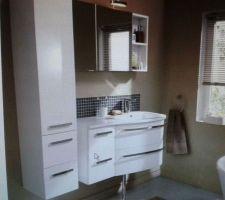 futur meubles de salle de bain