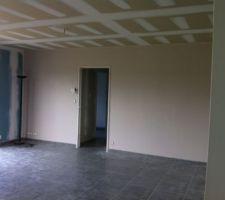 Mur cuisine/salon vieux rose