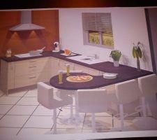 Voici l'idée d'aménagement de la cuisine. ça devrait s'en rapprocher. avec des meubles plus beige que jaune (délinia gris topaze chez leroy merlin pour les curieux) j'attends vos idées pour la couleur du plan de travail. on aimerait aussi faire un mur de couleur et les autres plus neutres et clairs. le mur de couleur serait le même que sur la photo, c'est à dire là où il y a la hotte. je pensais à un aubergine. qu'en pensez-vous ? avez-vous d'autres idées ?