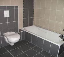 28 mars 2013 wc et robinetterie de la sdb poses