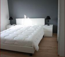 Photos et id es chambre d 39 adultes mur papier peint 474 - Modele de papier peint pour chambre ...
