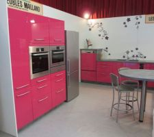 Notre cuisine exposée à la foire de printemps à Bourg en Bresse, chez les meubles Mailland
