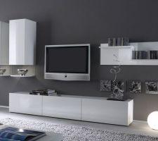 Idée d'ensemble meuble TV