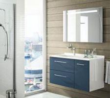Couleur de la façade du lave-mains pour le 1er WC ( NAUTIC ) en mat.
