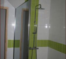 parois de douche miroir wendel