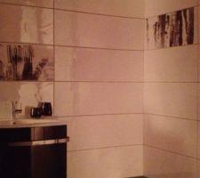Au sol 60/60 gris clair  Avec au mur du blanc parout et une bande en bas noir avec des decors  Seche serviette blanc castorama Meuble et colonne blanche castorama Paroi de douche miroir sanswiss