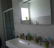 miroir lapeyre creatis fluo 60x87 5