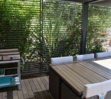 terrasse repas avec plancha