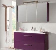 meuble de salle de bain baltique hygena