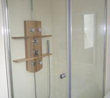 La douche : bac 90x90, parois fixe porte, colonne bois avec tablette et jets massant.