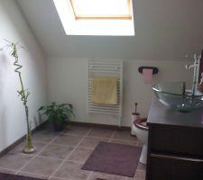 Salle de douche avec canine en coin meuble ou se mélange les couleurs marrons du meuble et tapis aux couleurs blanches et violine des murs