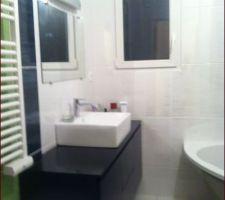 Vasque posée, miroir et bandeau lumineux