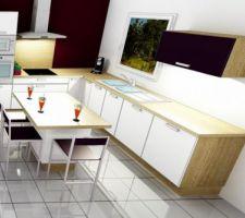 notre future cuisine