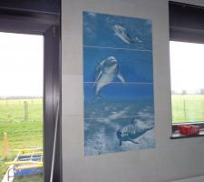 "Déco ""dauphins"" de la piscine . 01 2014"