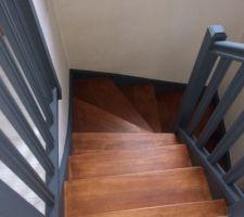 Nous avons repeint l'escalier en bicolore pour lui donner plus de personnalité et de chaleur. A la base, c'est un escalier en bois exotique très clair ( touaré). La rambarde est grise anthracite, alors que les marches ont reçu une couche de teinture Teck et deux couches de vitrificateur transparent. Le résultat est la hauteur de nos espérances. La peinture a été réalisé par nous-même et nos proches.