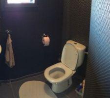 Réalisation des peintures et papier peint des toilettes du Rdc. Il nous reste des détails a peaufiner ( couleur de l'essuie main, du papier toilettes, installation d'une étagère et d'un store!